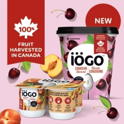 Get This Free Iögo Canadian Harvest Printable Voucher To Save $1