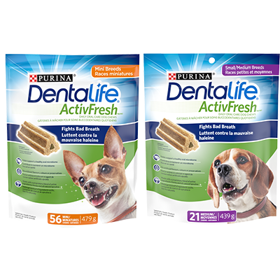Get New Dentalife Voucher To Print For $1.5 On SmartSource
