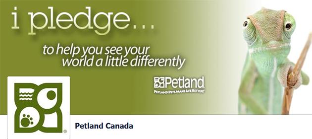 Petland Online